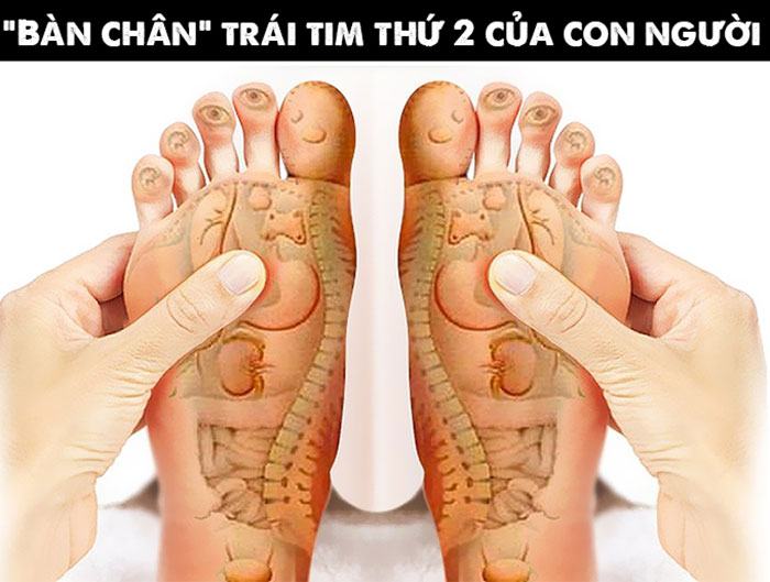 Xoa bóp chân giúp người già tăng cường sức khỏe, giảm lo âu, căng thẳng